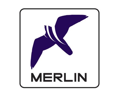 US Air Force Orders DeTect MERLIN™ Aircraft Birdstrike Avoidance Radar System